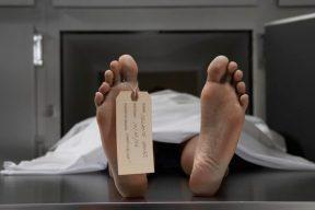 Cadaver.jpg