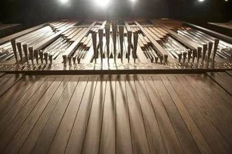 Organ109.jpg